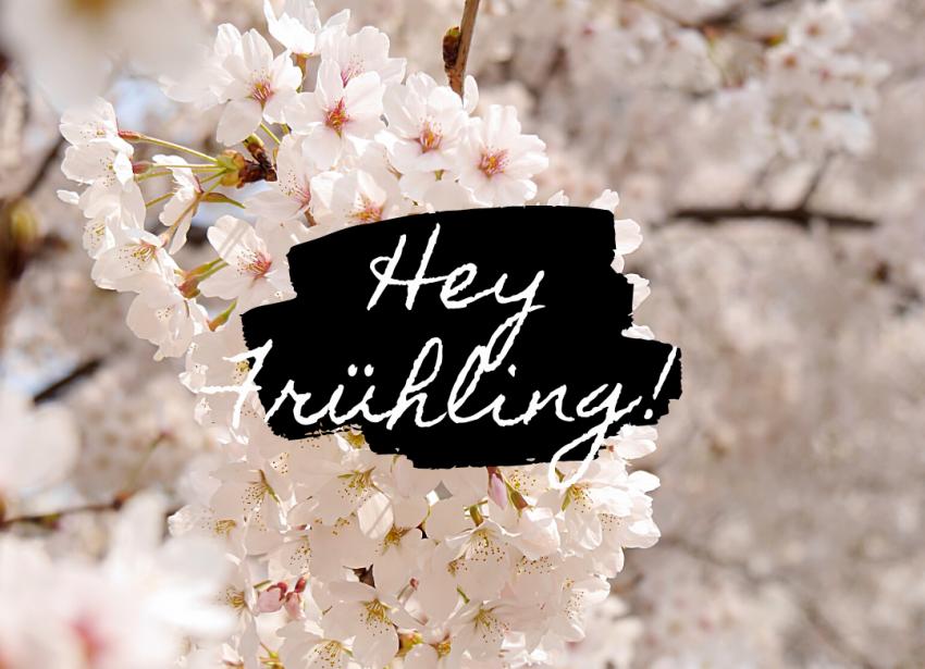 Frühlingsanfang - So schmeckt der Frühling