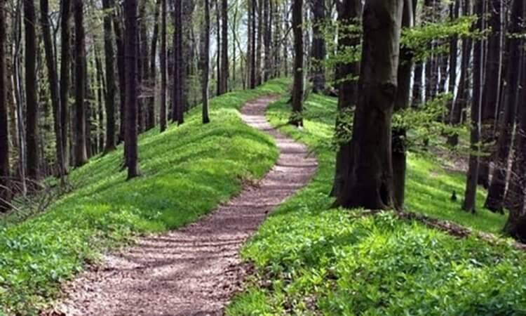 Der etwas andere Süden - Naturpark Wandern auf dem Ahornweg.